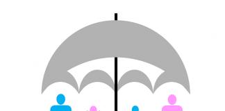 Nederlandse verzekeringskaart model voor EIOPA