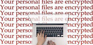 Iets meer dan kwart van cybercrime-delicten wordt gemeld