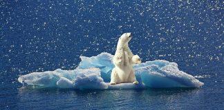 'Klimaatverandering zorgt voor 20% premiestijging in komende 30 jaar'