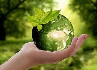 CMIS Franchise focust op duurzaamheid bij samenwerking met Colibri Hypotheken