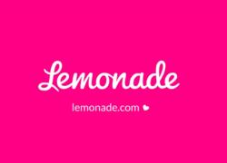 Internetverzekeraar Lemonade start in Nederland