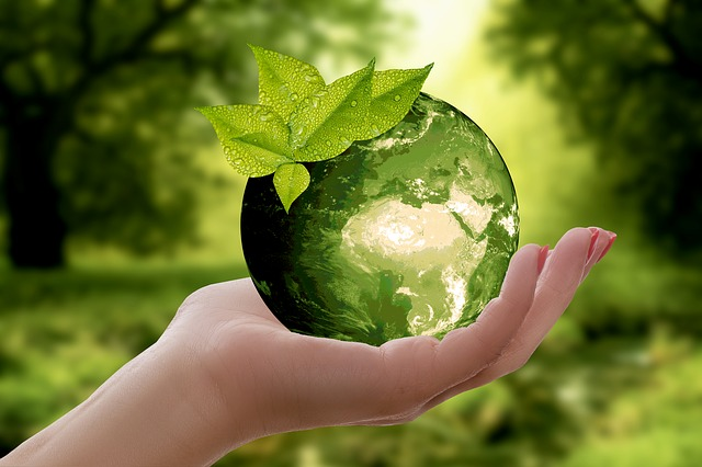 Rabobank en Hypotheekshop starten opleiding adviseur duurzaam wonen