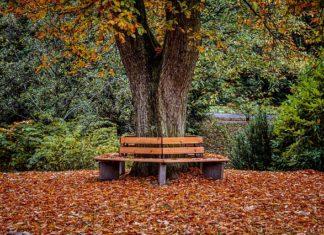 Nieuwe prognosetafel verbetert dekkingsgraad pensioenfondsen met zo'n 2%