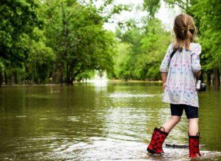 ABN AMRO: overstroming kan Nederlands bbp met 3% doen dalen