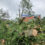 Topdrukte bij Stichting Salvage door regen en wind