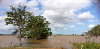 DNB: Neem klimaatrisico's mee in waardering vastgoed